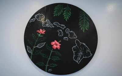 HiCO – Hawaiian Coffee